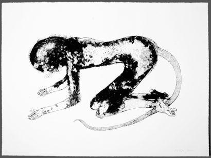 rats_children_2_large