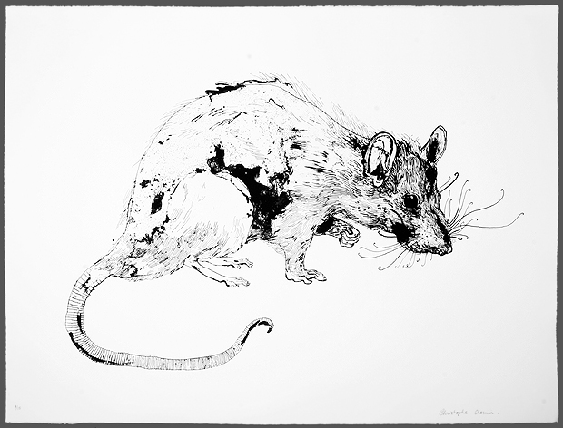 Line Drawing Rat : Christophe chemin u2013 rats & children rise berlin